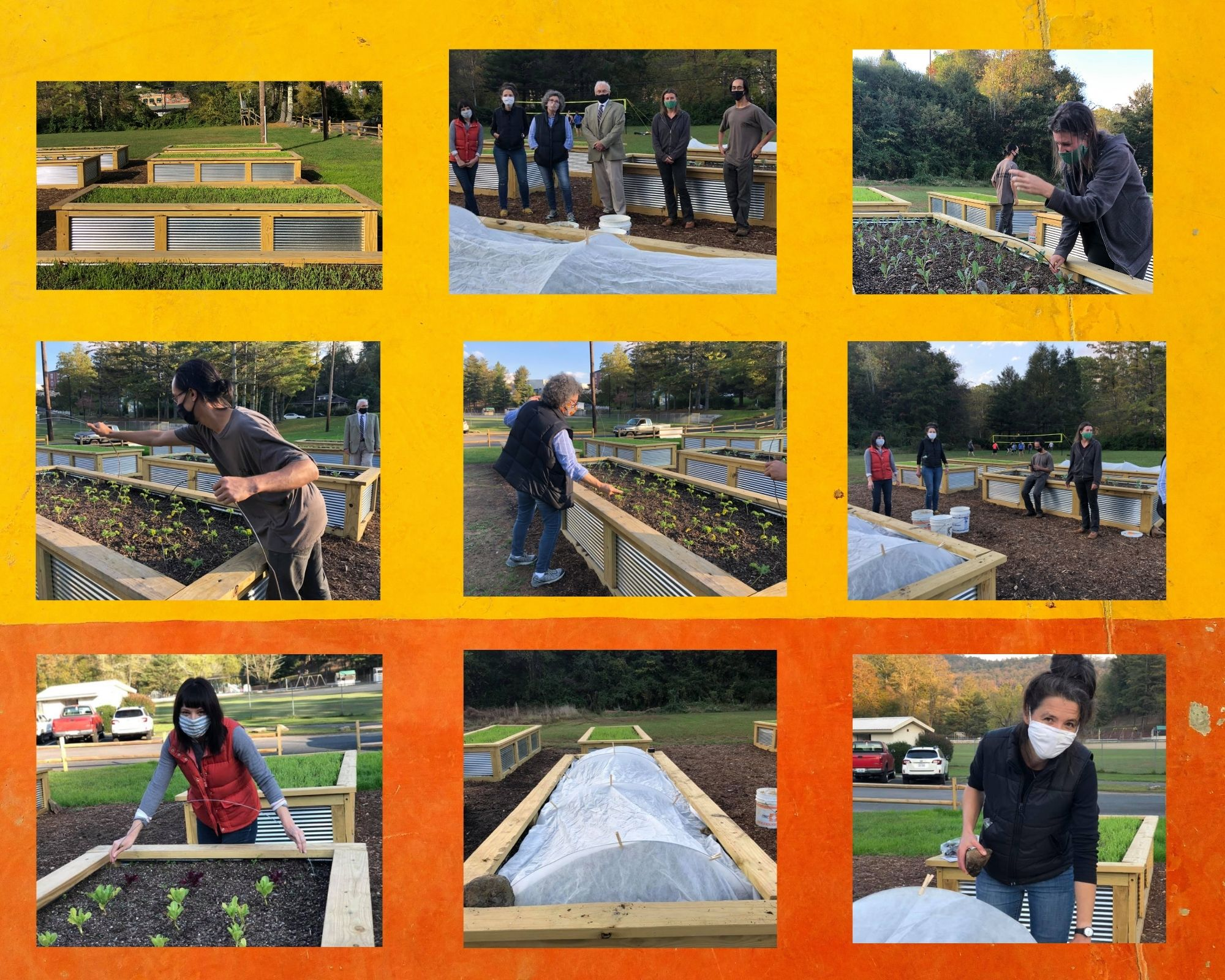 Giving Garden volunteers collage
