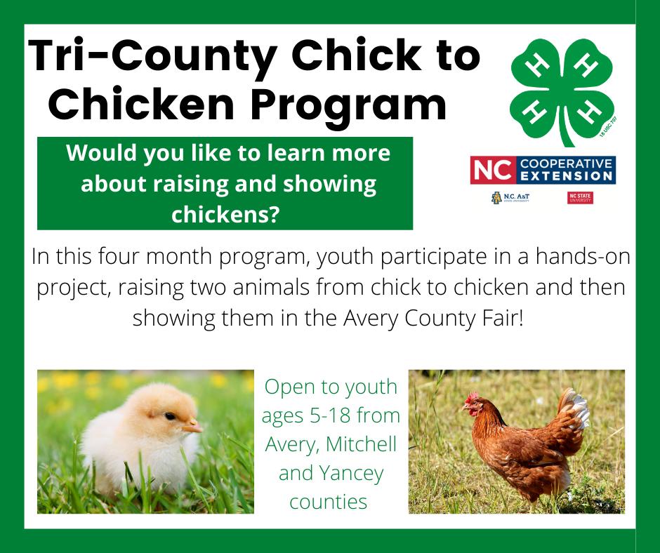 Tr-County Chick to Chicken Program Flyer